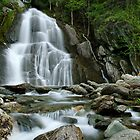 Moss Glen Falls - Midstream by Stephen Beattie