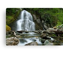 Moss Glen Falls - Midstream Canvas Print