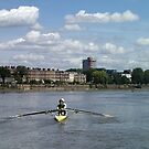 Thames Scullers by Chris Whitney