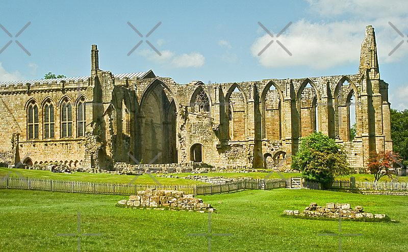 Bolton Abbey by Catherine Hamilton-Veal  ©
