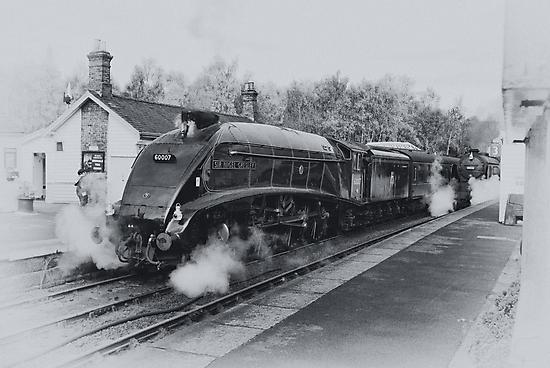 No 60007  Sir Nigel Gresley at Grosmont. by Trevor Kersley