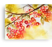 Cherry Pie Canvas Print