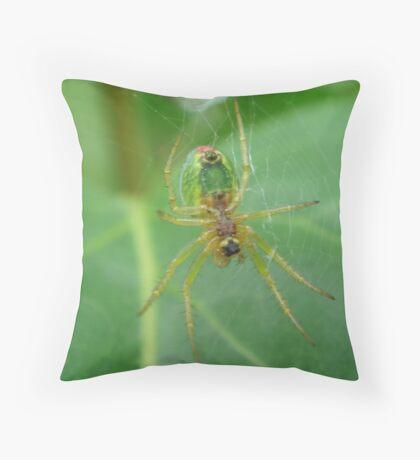 Arachnophobia!! Throw Pillow