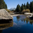 Tuolumne Meadows Afternoon by Rick Ferens