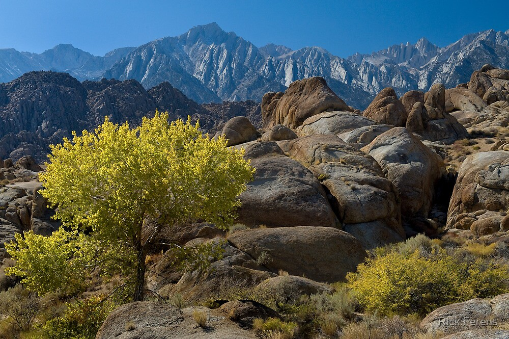 Alabama Hills and Mount Whitney with Fall Color by Rick Ferens