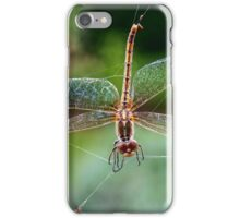 Dragonfly Caught iPhone Case/Skin