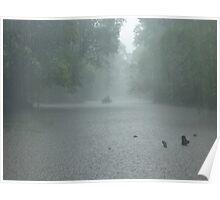 Jungle Rain Poster