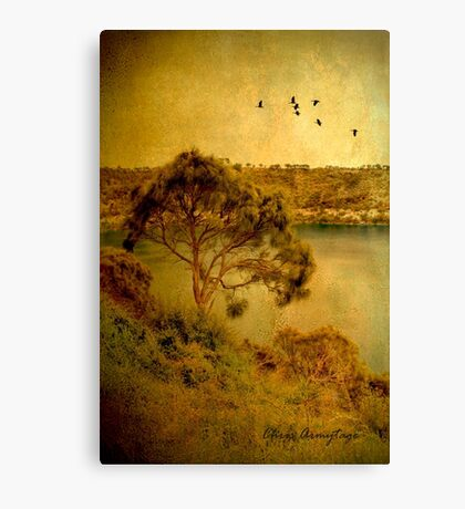 Let's go flying ... Canvas Print