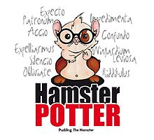 Pudding the Hamster - Harry Potter Photographic Print
