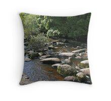 River Dart    Dartmoor Throw Pillow