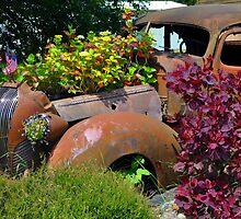 Flower Power by Bob Hortman