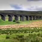 Dandry Mire Viaduct by Tom Gomez