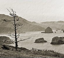 Oregon Coast by Bob Hortman