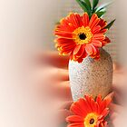 Orange Gerberas by Sheryl Kasper