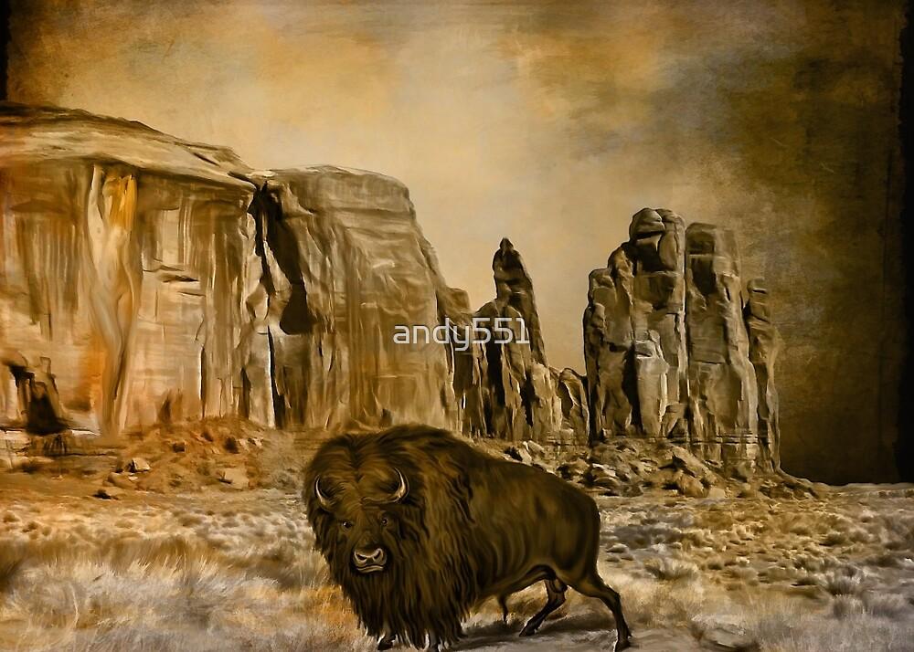 buffalo...... by andy551