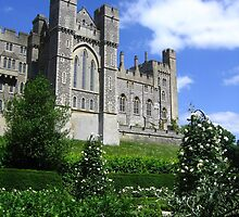 From the Rose Garden, Arundel Castle, Arundel, England 2010 by J.D. Grubb