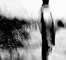 stroll in the mist.... no return by banrai