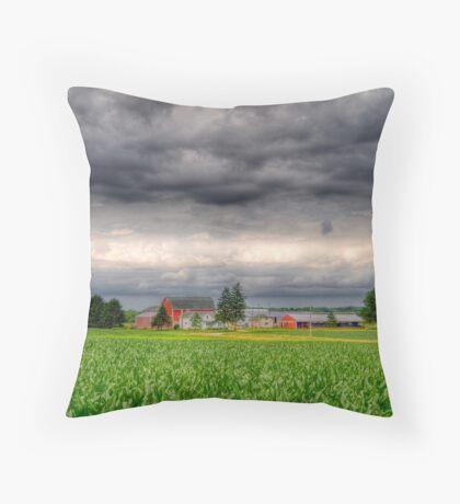 Storm Clouds Gathering-2 Throw Pillow
