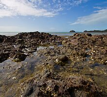 Cape Hillsborough Horizon by AlexKokas