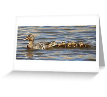 Mama Duck and her Babies Greeting Card
