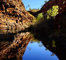 Hamersley Gorge, Karijini Postcard by Julia Harwood