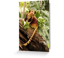 Goodfellows' Tree Kangaroo Greeting Card