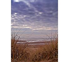 Wind Swept Beach Grass. Photographic Print