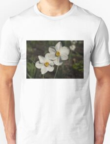A Pair of Fragrant Poet's Daffodils, Celebrating Spring T-Shirt