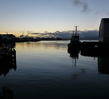 Early morning in Wellington Harbour by PhotosByG