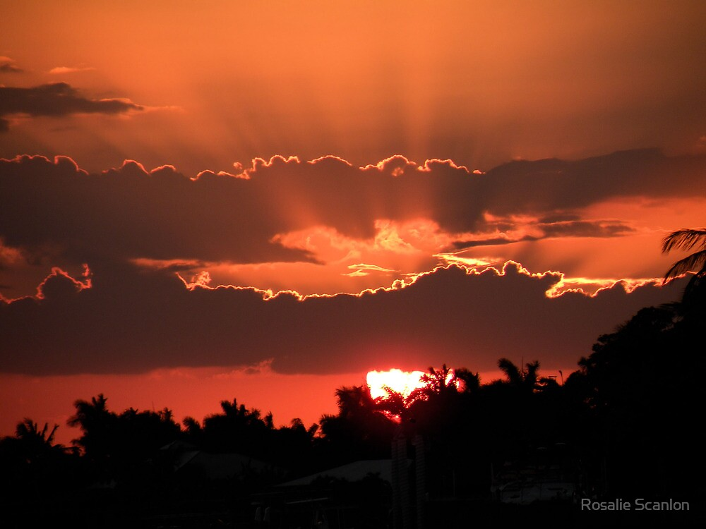 Copper Sunset by Rosalie Scanlon