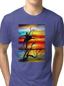 Dancer Tri-blend T-Shirt