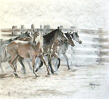 Stirring Up Dust by Janet Rawlings