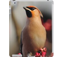 Bold and Beautiful iPad Case/Skin