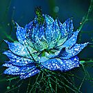 Blue Love by Tori Snow