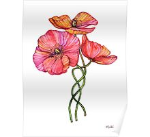 Peach & Pink Poppy Tangle Poster