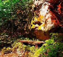A rock, a bench and some forest by Patrick Jobst