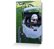 Chihuahua, the Biker Babe  Greeting Card