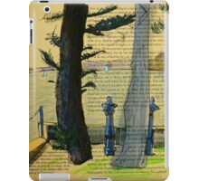 From Darling Point Twds Point Piper on an Overcast Day iPad Case/Skin