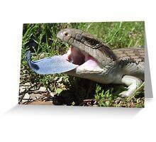 Eastern Blue-tongue Lizard Greeting Card