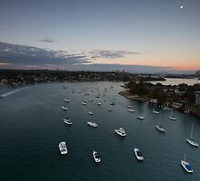 its a big one! - gladesville by Adam Smith