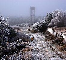 Frosty foggy day by OpalFire