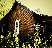 Memories and Echos by graceblack