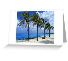 Chankanaab Beach Greeting Card