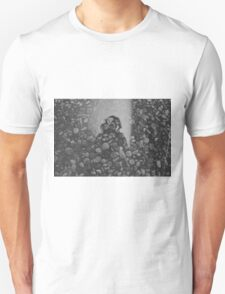stone and mirror T-Shirt