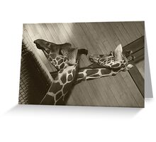 clear clean patterns Greeting Card