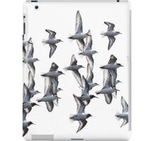Sanderlings and Dunlins in Flight iPad Case/Skin