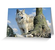 Watching Over the Pack Greeting Card