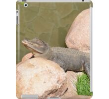 Sun Bath iPad Case/Skin