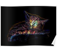 Sleepy Kitty - Cute cat / kitten glowing art Poster