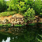 Baltz Lake Cove by Susan Blevins
